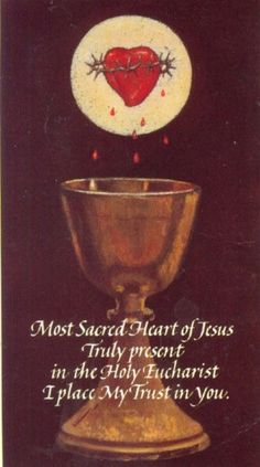"""""""Most Sacred Heart of Jesus, truly present in the Holy Eucharist, I place my trust in You."""""""