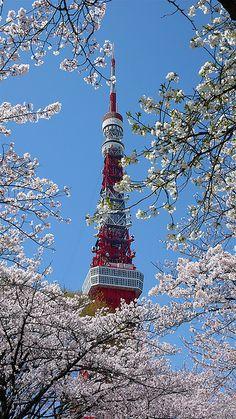 Tokyo Tower in Shiba Park ~ Tokyo, Japan • photo: Paul Atkinson on Flickr