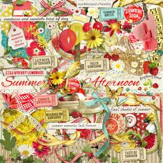 A beautiful set of summer themed embellishments designed to coordinate with the Summer Afternoon collection from Raspberry Road.