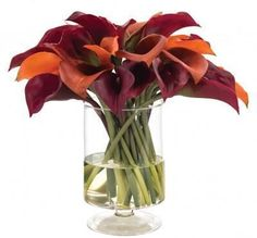 Calla lily in Fall colors