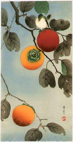 Seitei (Shotei) Watanabe (渡 辺 省 亭 japonais, 1851-1918)  Oiseau sur un arbre à kakis