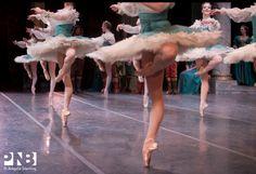 balletwarrior:  INSANE PASSES in PNB's Sleeping Beauty