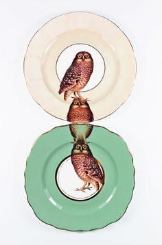 Owl plates by Yvonne Ellen