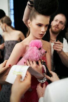 Gotta love a pink poodle!