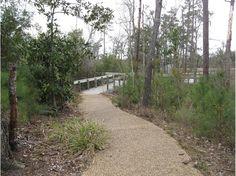 Davis Bayou Trail, Gulf Islands National Seashore, Ocean Springs, Mississippi