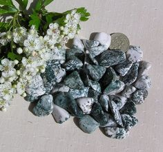 10 Tree Agate Crystal Tumblestones by SunnyCrystals on Etsy, £2.50