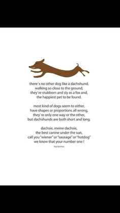 Ode to a weiner dog!