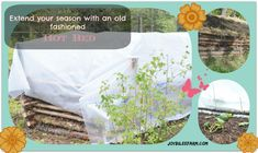 """Extend your season with an old fashioned """"Hot Bed"""""""