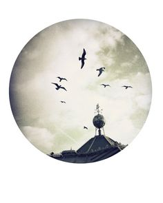 in flight by theswanandthefox on Etsy, #brighton #pier #england