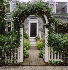 nantucket roses
