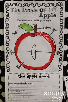 easy science activities for fall