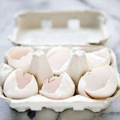 yahoo shine, dried egg shells, egg whites, 11 ingeni