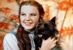 Dorothy with Toto, a brindle Cairn terrier (real name Terry)