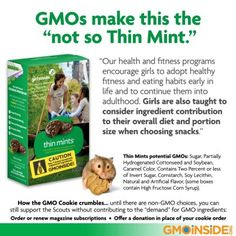 We'd love to see the Girl Scouts selling non-GMO cookies, but until then we are offering our homemade recipe for Organic Fair Trade Thin Mints here: http://gmoinside.org/recipe-non-gmo-organic-fair-trade-thin-mint-cookies/