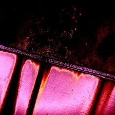 de limb, colour stori, 11 colour, pink thing, epur de