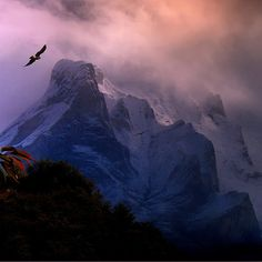 Birds of Prey over The Pyrenees by B℮n
