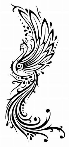 "this is really so close to what I want for my phoenix tattoo - but perhaps with slightly finer lines. may or may not include the quote ""you have every blessing - a phoenix."""