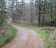 A meandering dirt road in Applegate, CA. Makes me wonder what is around the corner - http://www.placercountyhomesandland.com/applegate-ca-homes-for-sale.php