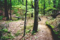 Oak Mountain State Park in Alabama is a truly spectacular place to visit - but so far from the beach! The solution? Book a Gulf Shores vacation rental, then take a road-trip to see this beautiful park.
