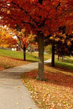 Michigan Fall #LoveLansing #Beauty #PureMichigan http://www.lansing.org/events/fallfun/