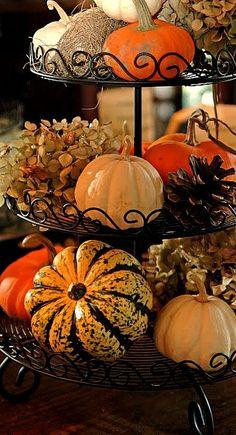 Ready for fall - decor...