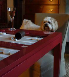 Oscar loves Backgammon