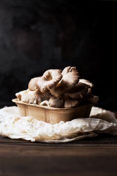 Brown Oyster Mushrooms, via Flickr.