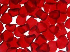 Making Rose Petal Beads