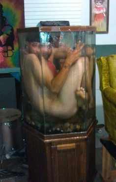 """this conversation started with...""""dude, i bet i could fit in the aquarium.""""!"""