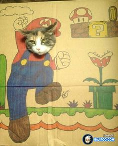 24 Pets In Funny Costumes