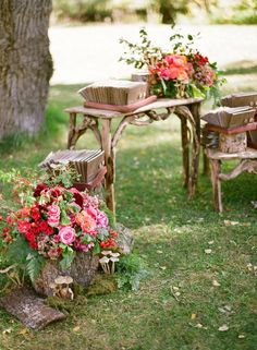 using tree trunk planters