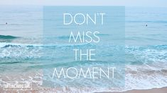 Free Wallpaper Download: Don't Miss The Moment