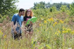Bee Lab - Bilal and Katie recording times of bee visits.