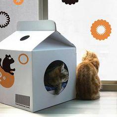 Casa de papelão para gatos da marca japonesa Moissue tem o mesmo design de uma caixa de leite. (Folha Online)