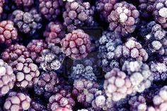 Sugared Blackberries... YUM!