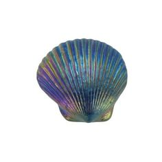 Turkish Blue Sea Shell Paperweight by Robert Held found on Polyvore