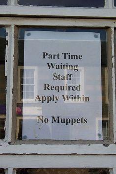No Muppets