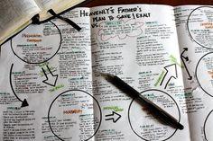 Plan of Salvation - Feb. lesson