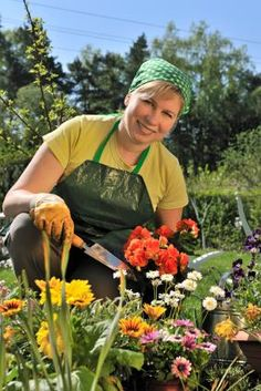 """Planting Flowers by Zone. Planting flowers by zone is a way to ensure you have a healthy and productive flower garden this year. In agricultural terms, """"zones"""" are unique geographical locales where specific climates dictate what plants will best grow there. #gardenzones"""