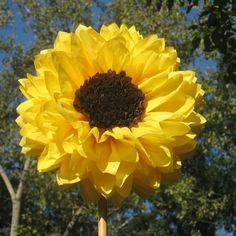 tissue paper sunflower decoration