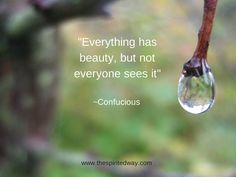 """""""Everything has beauty, but not everyone sees it."""" ~Confucius"""