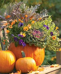 Beautiful fall arrangement