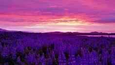 Midnight Sun, Iceland – Fantastic video