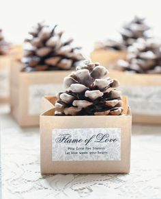 DIY Pinecone Fire Starter Favors ~