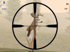 2012 Deer Hunting Season coming soon!