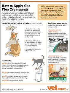 How to apply Cat flea treatments