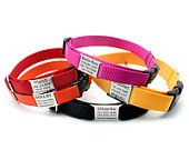 Laser Engraved Personalized Buckle Webbing Dog Collar by LaserPets