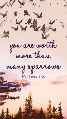 ~Matthew 10:31~