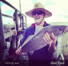 This 83cm Jewie was caught by Sini at Kingfisher Bay's jetty and he's pretty happy about it.   #fraserisland #fraserislandfishing #homeoffishing #kingfisherbay #eurongbeach #fraserislandbarges #hooked