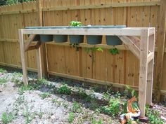 upside down garden stand, will plant lettuce in the tops, and hanging upside down in each one will be tomatoes, strawberries, cucumber, cantaloupe, and a variety of peppers.